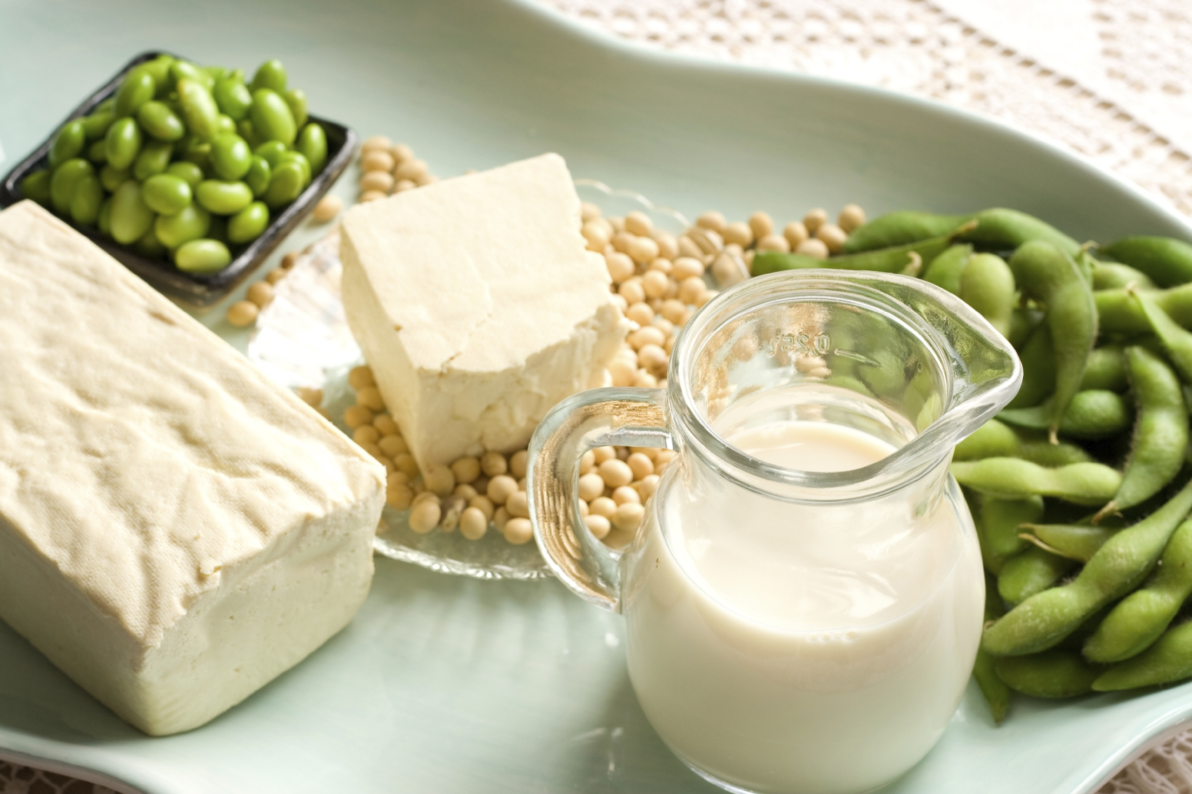 Tofu et lait de soja
